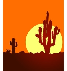 Sunset in desert with cactuses vector