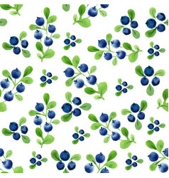 Watercolor seamless pattern with berries and vector