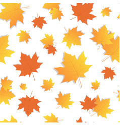yellow marple leaf seamless pattern autumn vector image