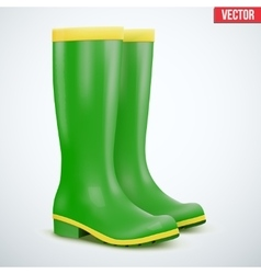 Green Garden rubber high boots vector image