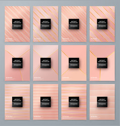 Brochure template with rose goldbackground vector