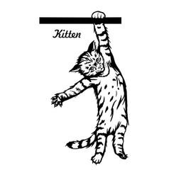 cute kitten hanging on line - cheerful kitty vector image