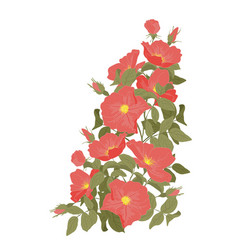 Embroidery wild roses dogrose flowers classic vector