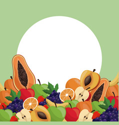 fruit ripe juicy badge image vector image