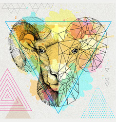 hipster animal realistic and polygonal ram vector image