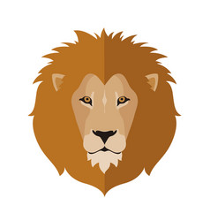 lion head in flat style vector image