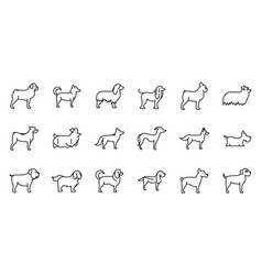 Set dogs breed standing icons linear style vector