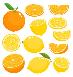 bright set of juicy orange and lemon on vector image