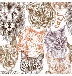 collection of different cats vector image