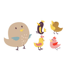 cute birds set cartoon vector image