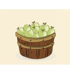 Green apples in a wooden basket vector