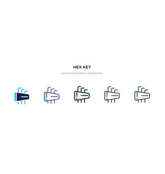 Hex key icon in different style two colored vector