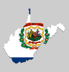 map with national flag vector image