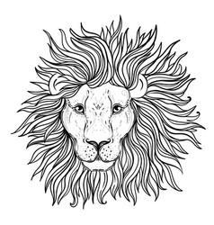 patterned ornate lion head african indian totem vector image