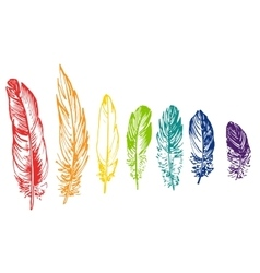 Set of rainbow feathers vector