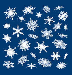 set of white snowflakes on blue background vector image