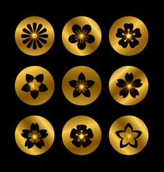 stylish golden icons with flowers silhouettes vector image