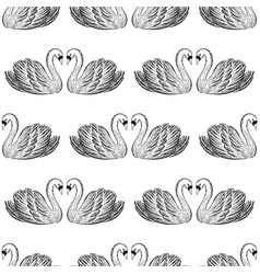 swan pair seamless pattern hand drawn vector image
