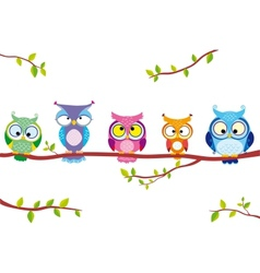 owl five vector image vector image