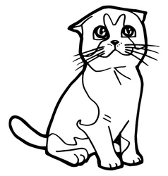cartoon Cat Coloring Page vector image vector image