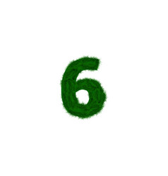 numbers decorated with pine branches vector image vector image