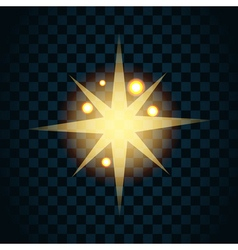 Shine gold star with glitter and golden sparkle vector image vector image