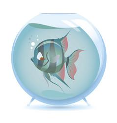 Cartoon angelfish vector