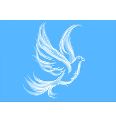 Dove on blue vector