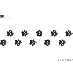 Lion paw prints silhouette vector