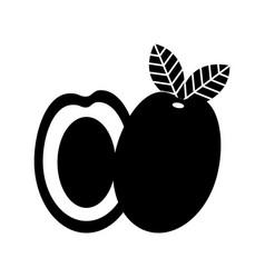 Mango fresh fruit isolated icon vector