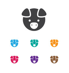 of zoology symbol on pig icon vector image