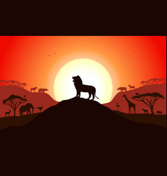 Roaring silhouette a lion standing on a hill vector