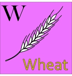 W letter alphabet Coloring book wheat vector image