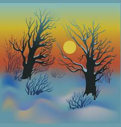 winter sunset landscape vector image vector image