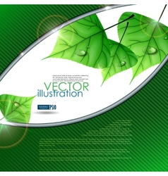Eco Green Background With Leaves Eps 10 vector image vector image