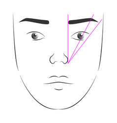 face of a woman with the correct form of vector image
