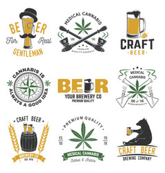 set medical cannabis and craft beer badge vector image