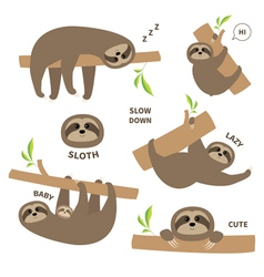 Sloth set mother with baby cute lazy cartoon vector