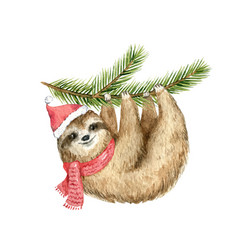 Watercolor christmas card cute sloth vector
