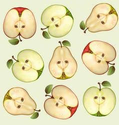 fruit design vector image vector image