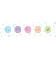5 mammal icons vector image