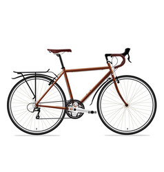 brown bicyle vector image