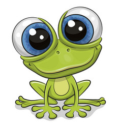 cartoon frog isolated on a white background vector image