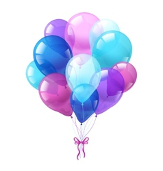 Colorful balloons bunch white background vector