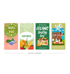 flat healthy eco food vertical banners vector image