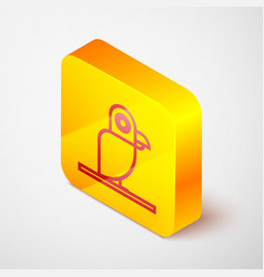 Isometric line pirate parrot icon isolated on grey vector