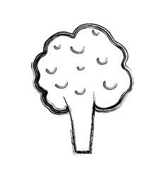 Line health broccoli vegetable icon vector