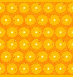 Orange fruit seamless pattern texture vector