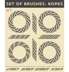 set brushes 1ropes vector image