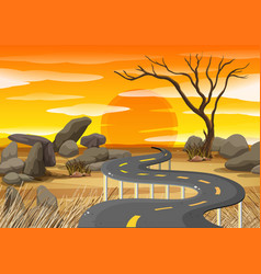 sunset at savanna field vector image